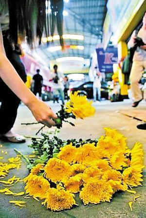 图片●佛山市民献花哀悼小悦悦高清图片